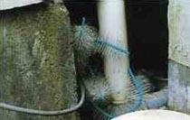 防鼠ブラシRR-40 施工例2