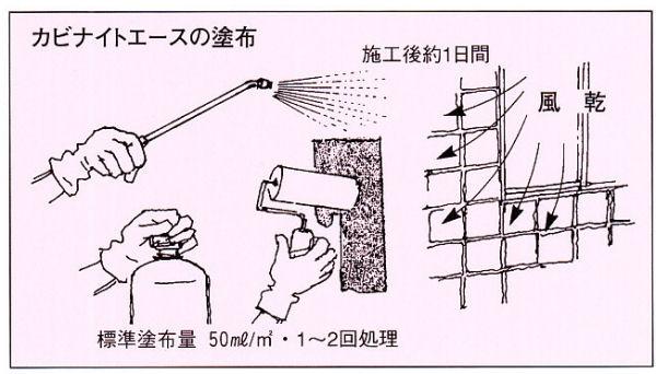 カビナイトエース 使用方法 [害虫駆除、退治、対策、忌避、木部保護、木材、防腐]