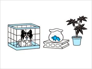 バルサン 使用前に準備すること3 [第2類医薬品、害虫駆除、くん煙剤、バルサン、ゴキブリ、ノミ、ダニ、南京虫]