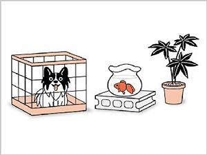 香るバルサン クリアシトラスの香り 12-20畳用  使用前に準備すること3 [第2類医薬品、害虫駆除、くん煙剤、バルサン、ゴキブリ、ノミ、ダニ、南京虫]