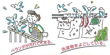 スプレーするだけ!簡単ハト対策 ハトガード 説明画像1