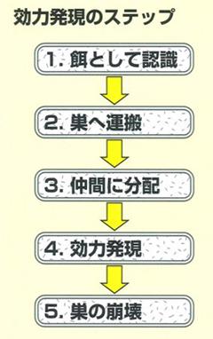 アンツバスター 使用方法1