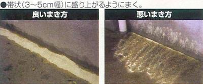 アルゼンチンアリ殺虫&侵入防止粉剤 商品画像5