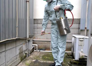 B&Gエクステンダーバン 1ガロン 使用方法4 [噴霧器、殺虫剤、農薬、消臭剤、害虫駆除]