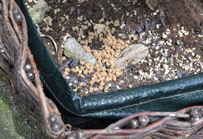 虫コロパーベイト 使用方法2 [害虫駆除、不快害虫、ダンゴムシ、ワラジムシ、ヤスデ、誘引]