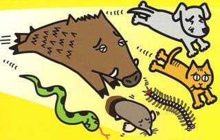 逃げまんねん,害虫駆除,不快害虫,イタチ、キツネ、コウモリ、シカ、イノシシ、ネコ、犬、ネズミなど嗅覚の発達した動物やヘビ、モグラ